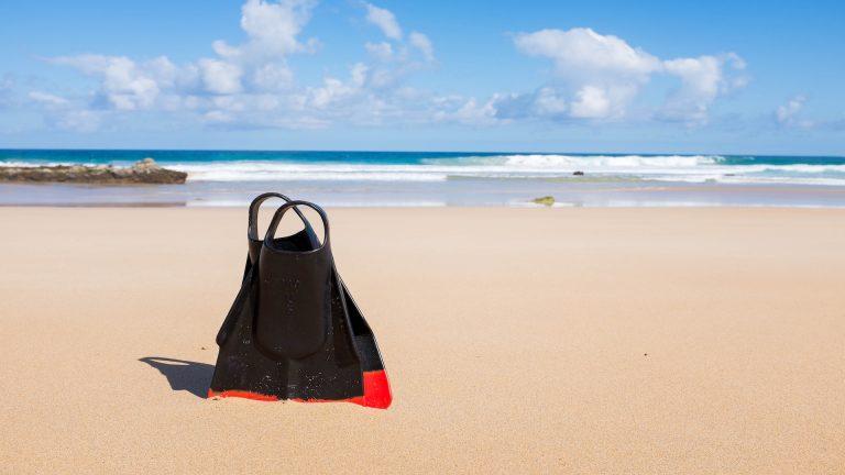 Pinne sulla spiaggia