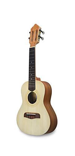 APC Instruments BR110 - brasiliano Cavaquinho