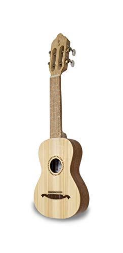 APC Instruments 100 - Cavaquinho
