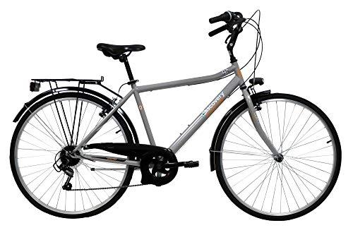 Discovery Bicicletta Uomo, Bici Trekking Manhattan 28'' Cambio Shimano 6 velocità, Colore Metal, Silver Metallizzato, 28